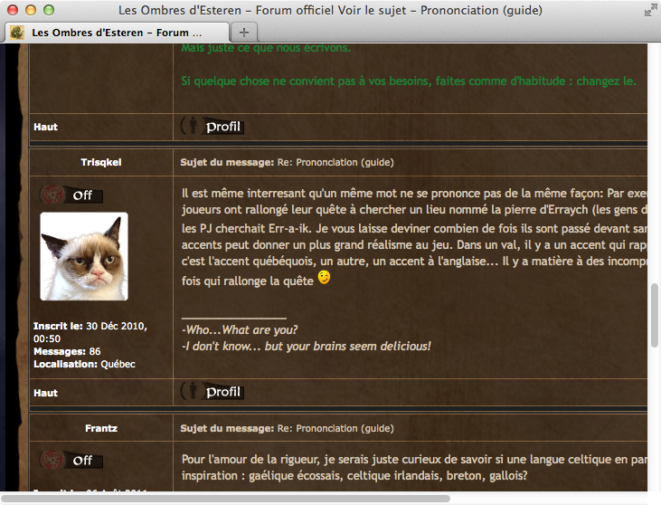 Screenshot: Foreneintrag mit Grumpy Cat-Avatar