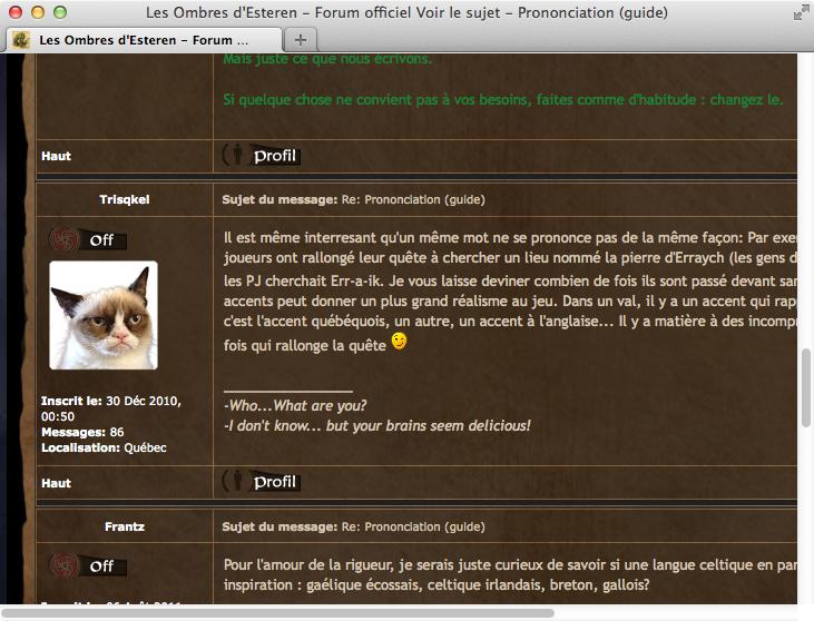 Screenshot: Foreneintrag mit Grumpy Cat-Avatar