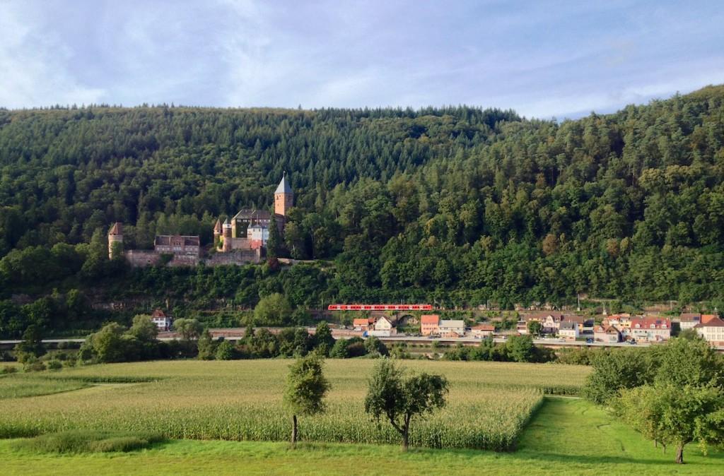 Burg Zwingenberg am Neckar mit Baureihe 425